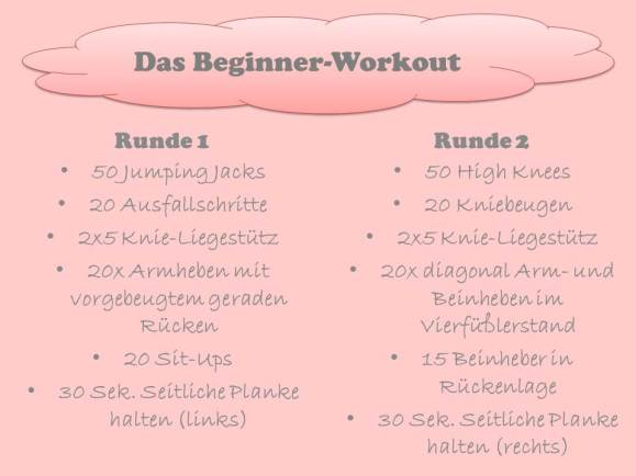 Beginner-Workout